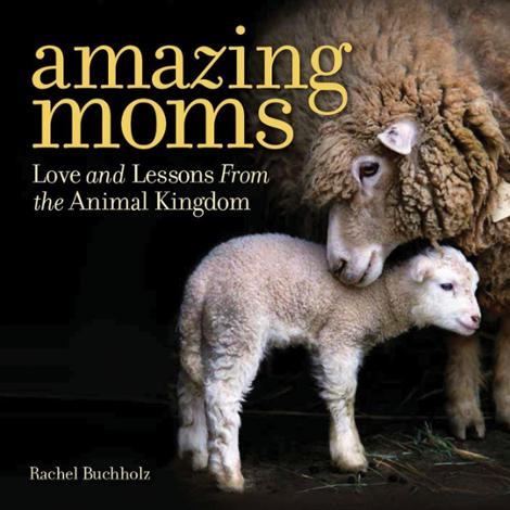 Amazing Moms Book