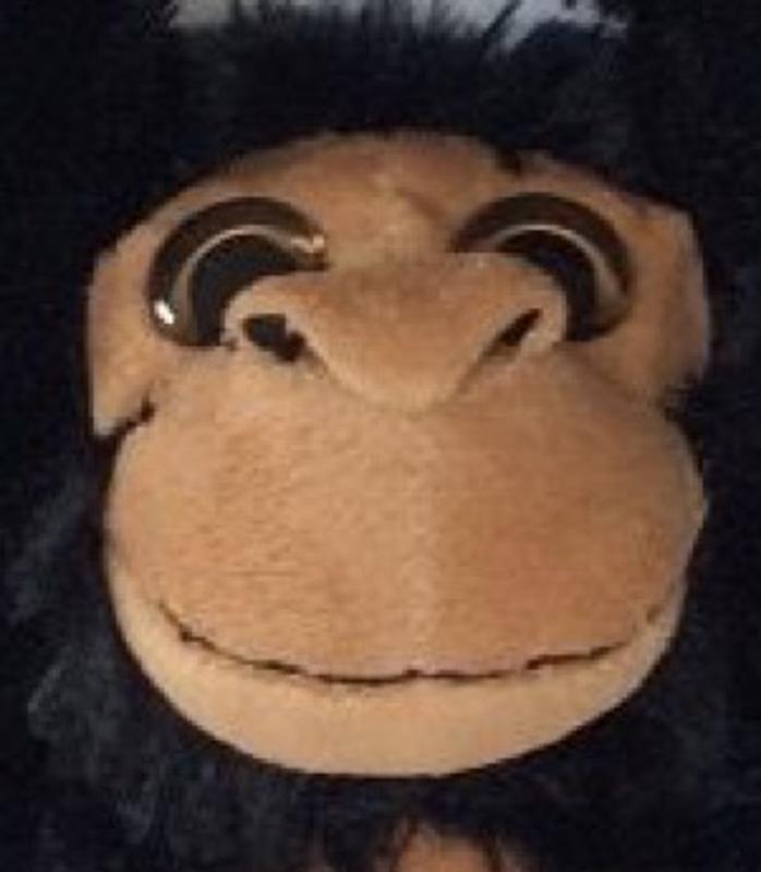 Hanging Chimpanzee Monkey with Sound