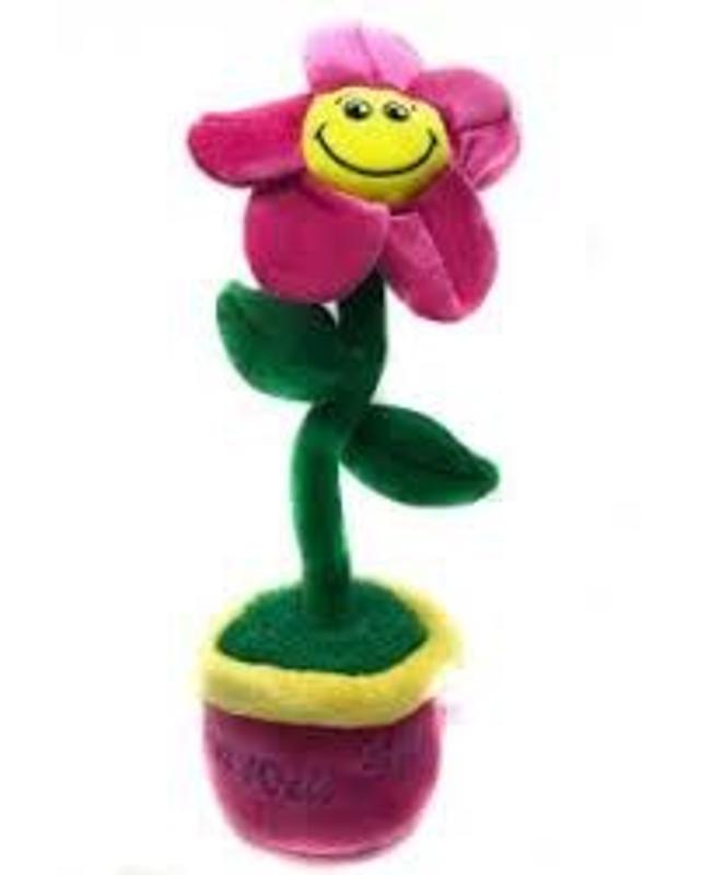Singing Get Well Soon Animated Flower Sings You are my sunshine 16 Inch