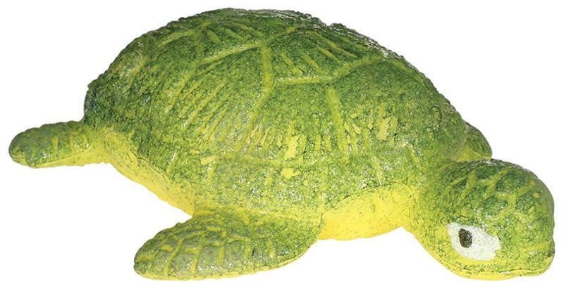Hatchin Grow Turtle
